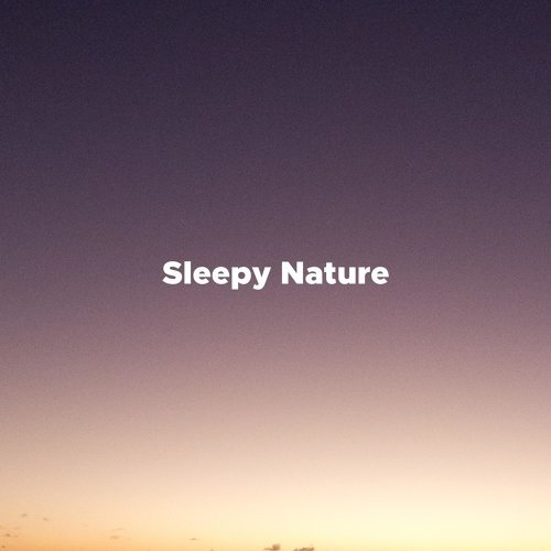 Sleepy Nature - Relaxing Music for Massage, Spa, Yoga, Stress Relief, Meditation with Thunderstorm, Nature Sounds, Sleep Music