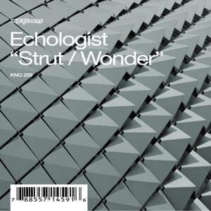 Strut / Wonder