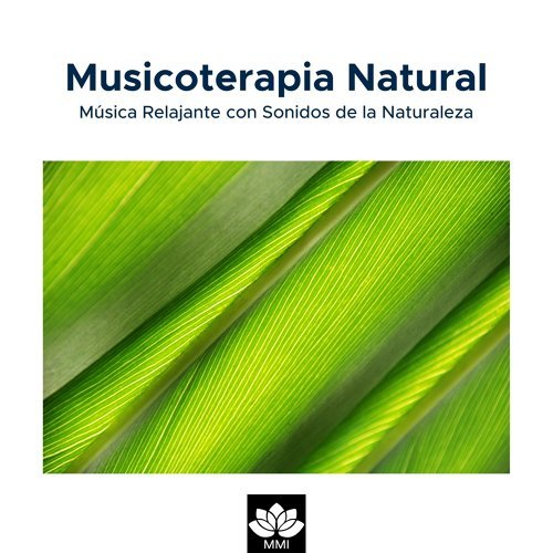 Musicoterapia Natural: Música Relajante con Sonidos de la Naturaleza(Lluvia, Olas del Mar, Canto de los Pájaros, Ranas y Grillos)