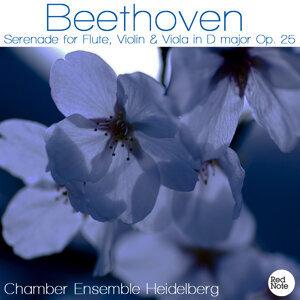 Beethoven: Serenade for Flute, Violin & Viola in D major Op. 25