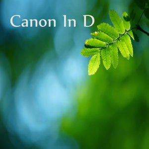 Solo Instrumental: Canon in D Piano