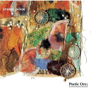 Poetic Ore; Invisible Beautiful Realism