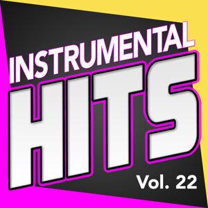 Instrumental Hits, Vol. 22