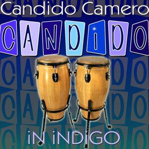 Candido In Indigo
