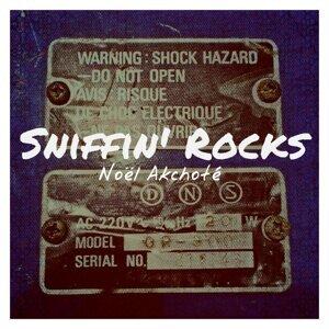 Sniffin' Rocks