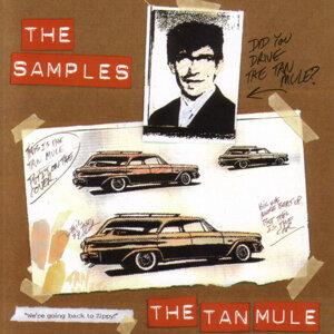 The Tan Mule