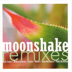 Moonshake Remixes