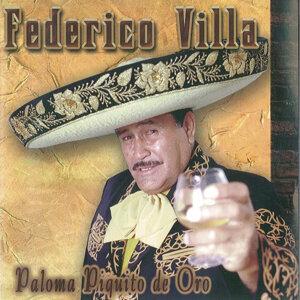 Paloma Piquito De Oro