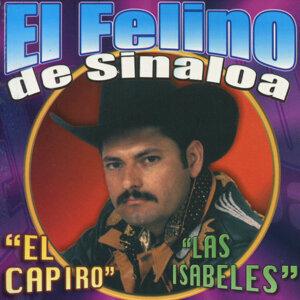 El Felino de Sinaloa