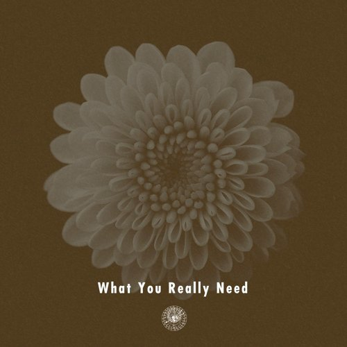 What You Really Need (feat. Miraa May) (What You Really Need (feat. Miraa May))
