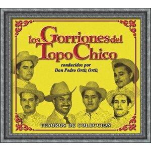 Tesoros De Coleccion - Los Gorriones Del Topo Chico