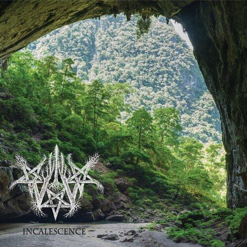 Incalescence