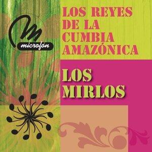 Los Reyes De La Cumbia Amazonica