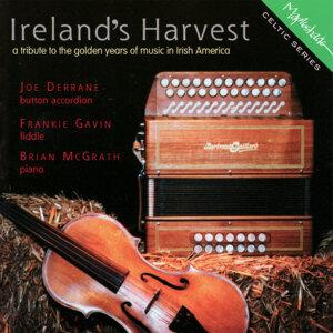 Ireland's Harvest