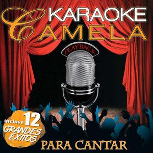 Karaoke Camela Playback. Incluye 12 Grandes Éxitos Para Cantar