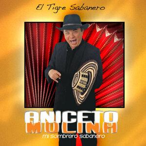 El Tigre Sabanero