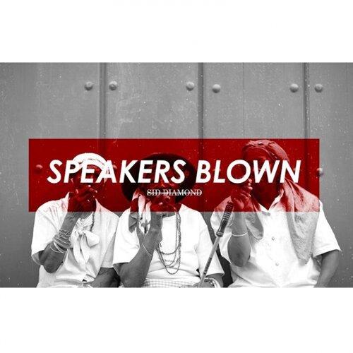 Speakers Blown