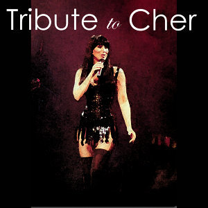 Tribute to Cher