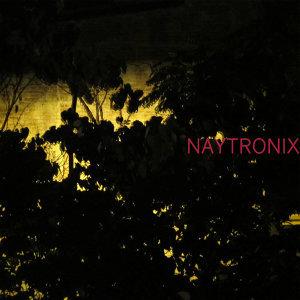 Naytronix