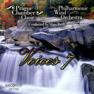 Voices 7