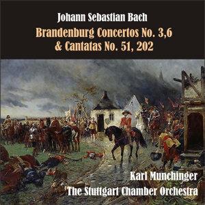 Bach: Brandenburg Concertos No. 3,6 & Cantatas No. 51, 202