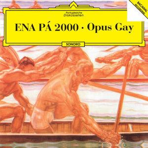 Opus Gay