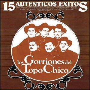 15 Auténticos Exitos de Los Gorriones Del Topo Chico