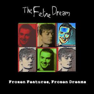 Frozen Features, Frozen Dreams