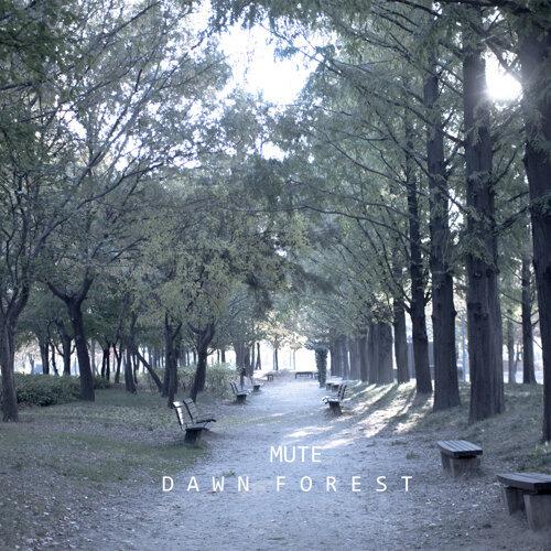 DawnForest