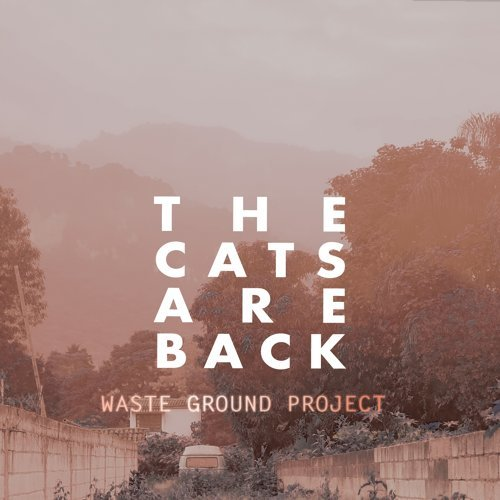 The Cats Are Back
