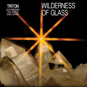 Wilderness of Glass