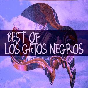 Best Of....