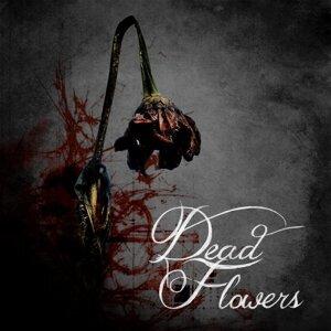 Dead Flowers (dB x LooP) (Dead Flowers (dB x LooP))