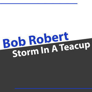 Storm In A Teacup - Single