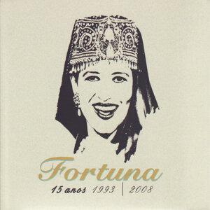 15 Anos (1993 - 2008)
