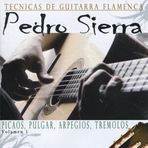 Tecnicas de Guitarra Flamenca