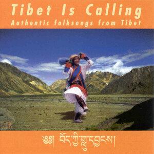 Tibet Is Calling