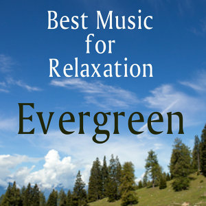 Best Music for Relaxation: Evergreen