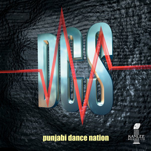 Punjabi Dance Nation