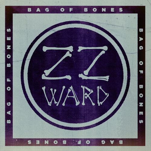 Bag of Bones - Fan Version