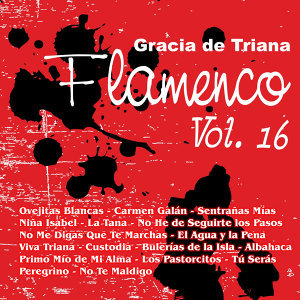 Flamenco Vol. 16