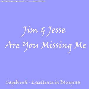 Are You Missing Me
