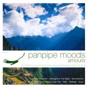 Panpipe Moods: Amoure