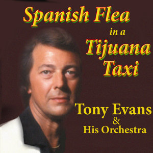 Spanish Flea in a Tijuana Taxi