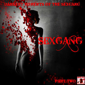 Darkest Moments of the Sexgang Vol. 2