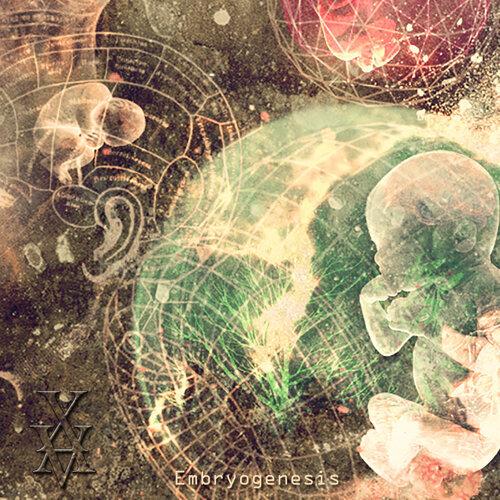 Embryogenesis