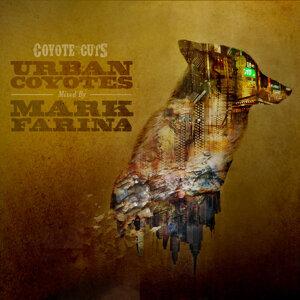 Urban Coyotes