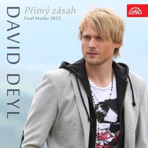 Přímý zásah (Final Master 2012) - Singl