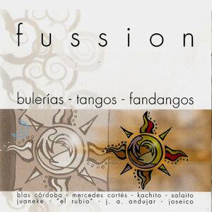 FUSSION Bulerias, Tangos, Fandangos