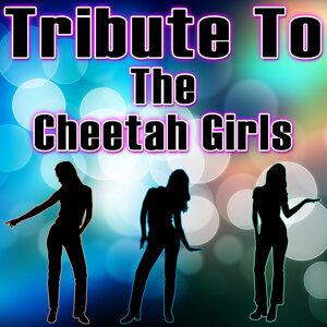 Tribute to the Cheetah Girls